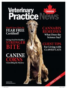 Cover of inaugural issue of Veterinary Practice News Canada